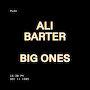 Ali Barter - Big Ones