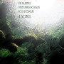 Dee Blundell / Fynn Khiari-Douglas / Ross Douglas - You sang me