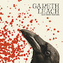 Gareth Leach - Old Crow Feather