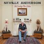 Neville Anderson - The Facebook Song
