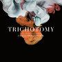 Trichotomy - Strom