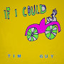 Tim Guy - If I Could