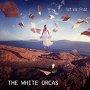 The White Orcas - Set Me Free