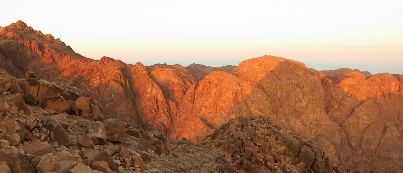Mount Sinai banner