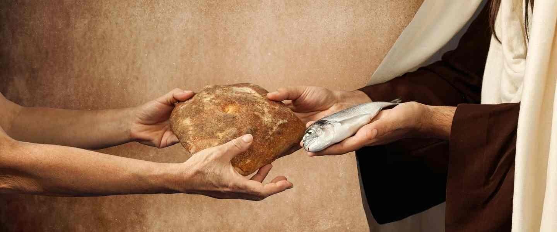 Abundance fish and loaves