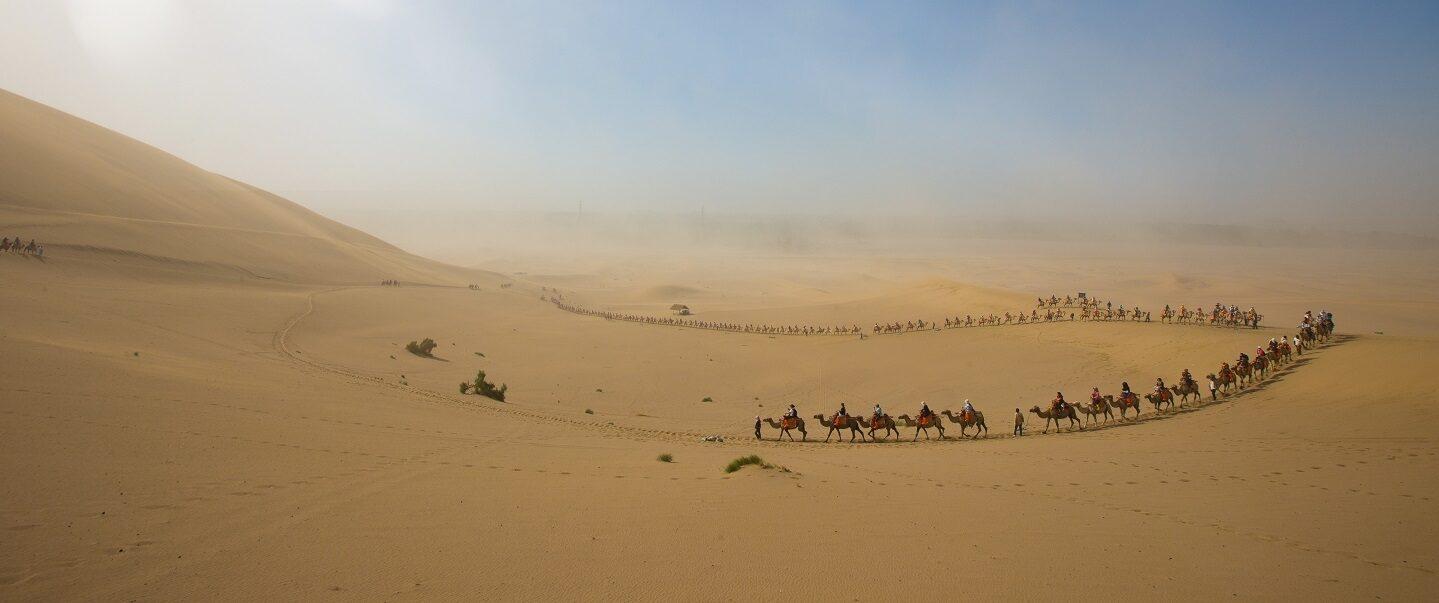 Camel caravan group sand blue sky banner