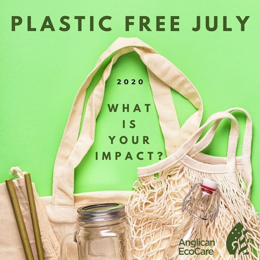 P25 Eco Care IMAGE plastic free july