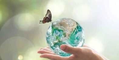 Sustainability safeguard life thumbnail