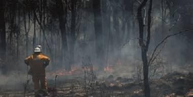 Bushfires, our schools and Lent