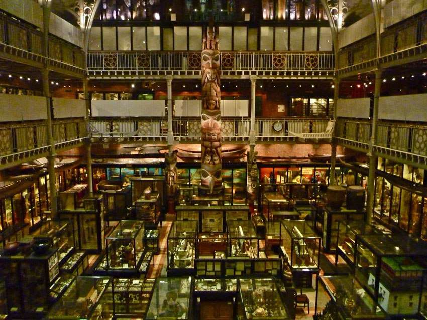 Large museum space filled with display cabinets and artefacts
