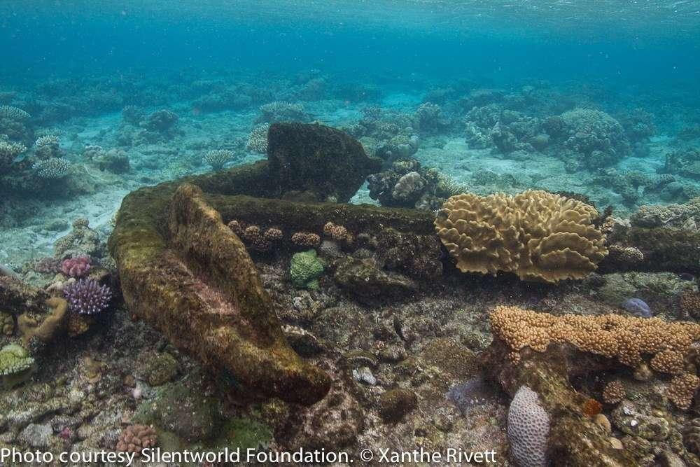 Photo of anchor underwater