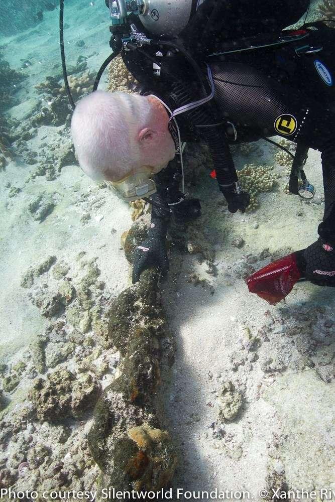 Kieran underwater with anchor chain