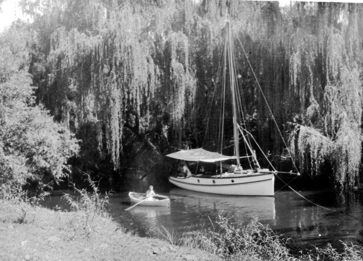 Boat on water under willow tree