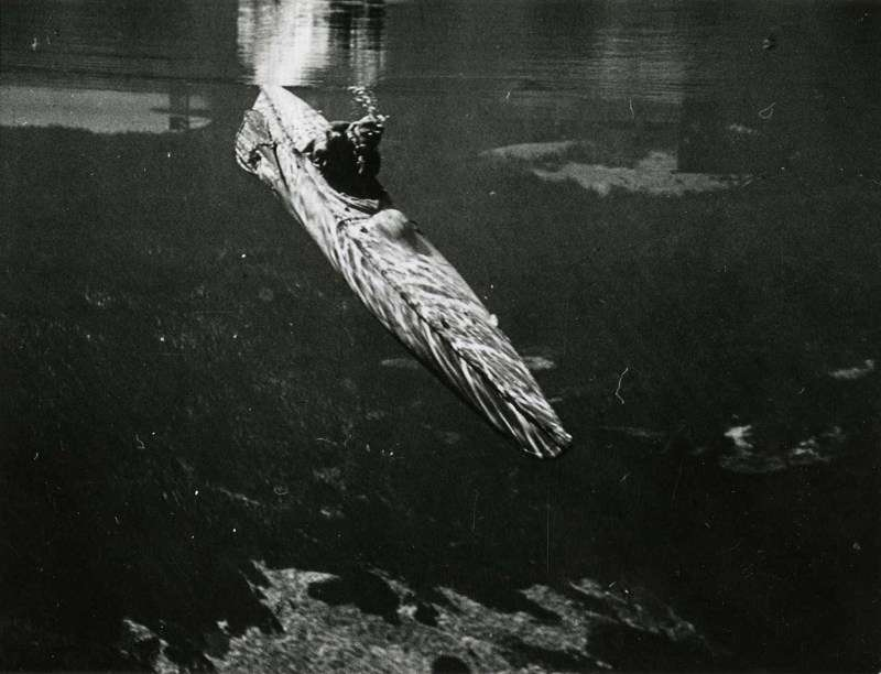 Motorised submersible canoe or 'Sleeping Beauty' diving about 1945. National Archives UK image DEFE 2/1144A