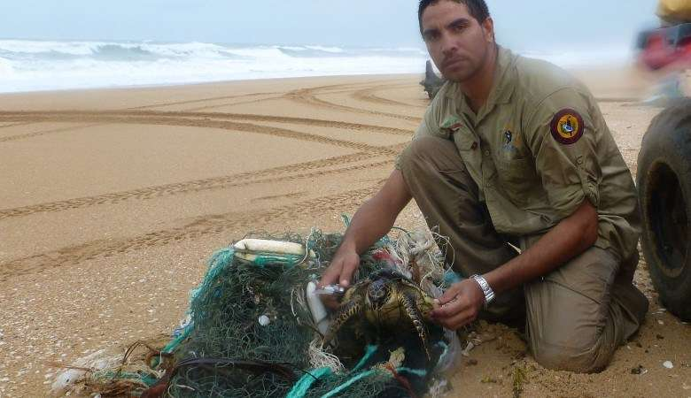 Ranger freeing a turtle from ghost nets