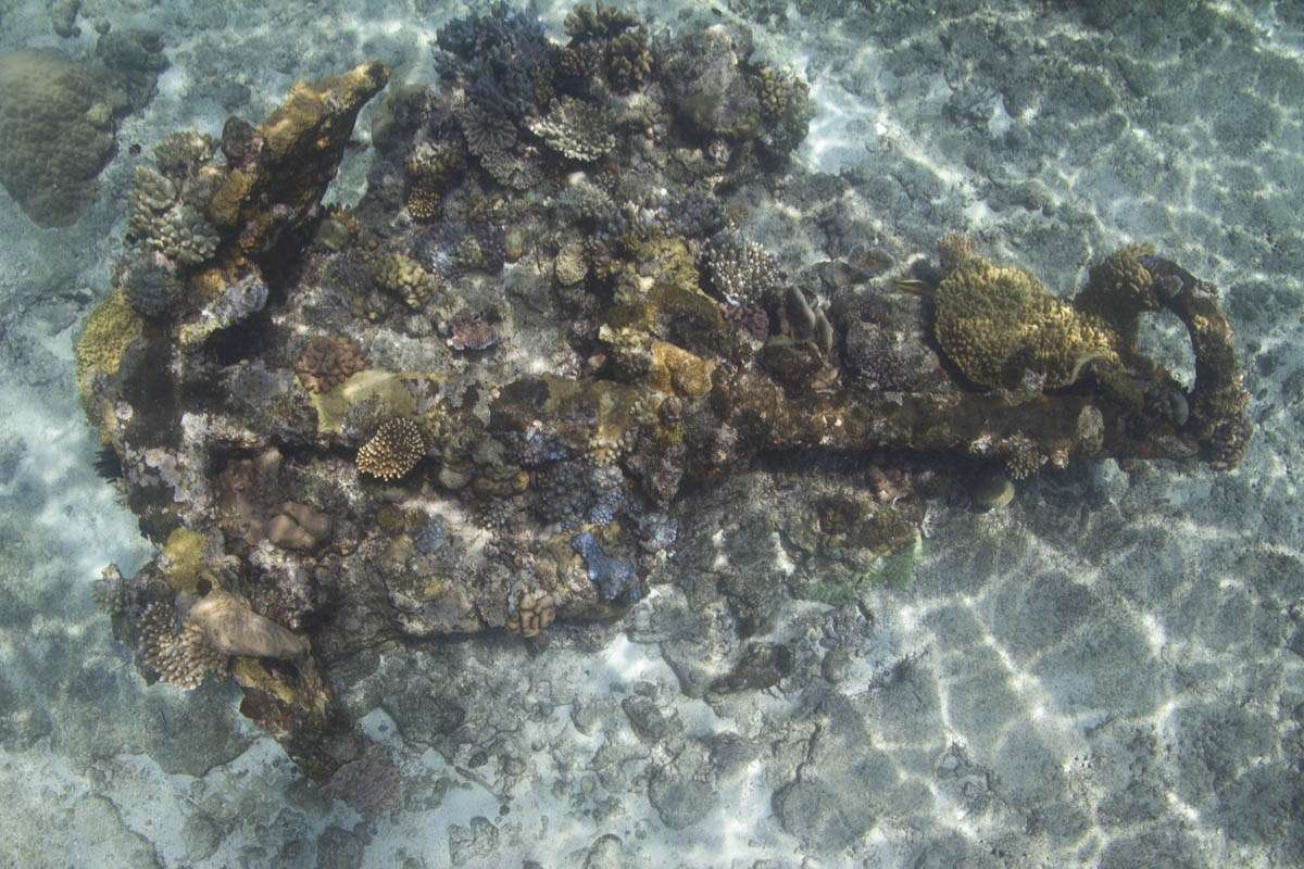 Anchor on Ashmore Reef.