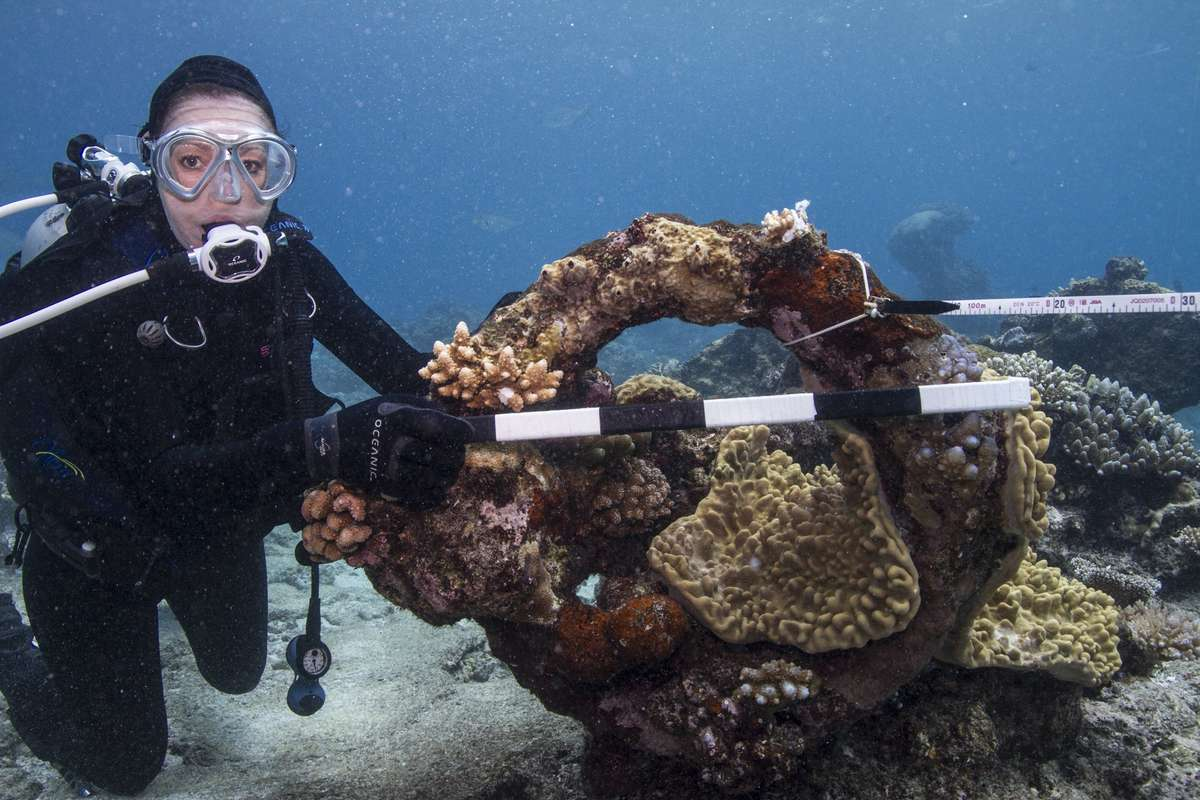Jacqui Mullen and anchor ring on the Ashmore Reef site