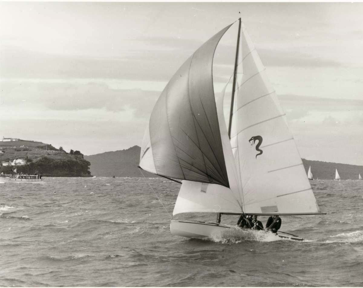 TAIPAN under spinnaker in a fresh south east breeze, during the third heat of the 1960 world championships in Auckland.