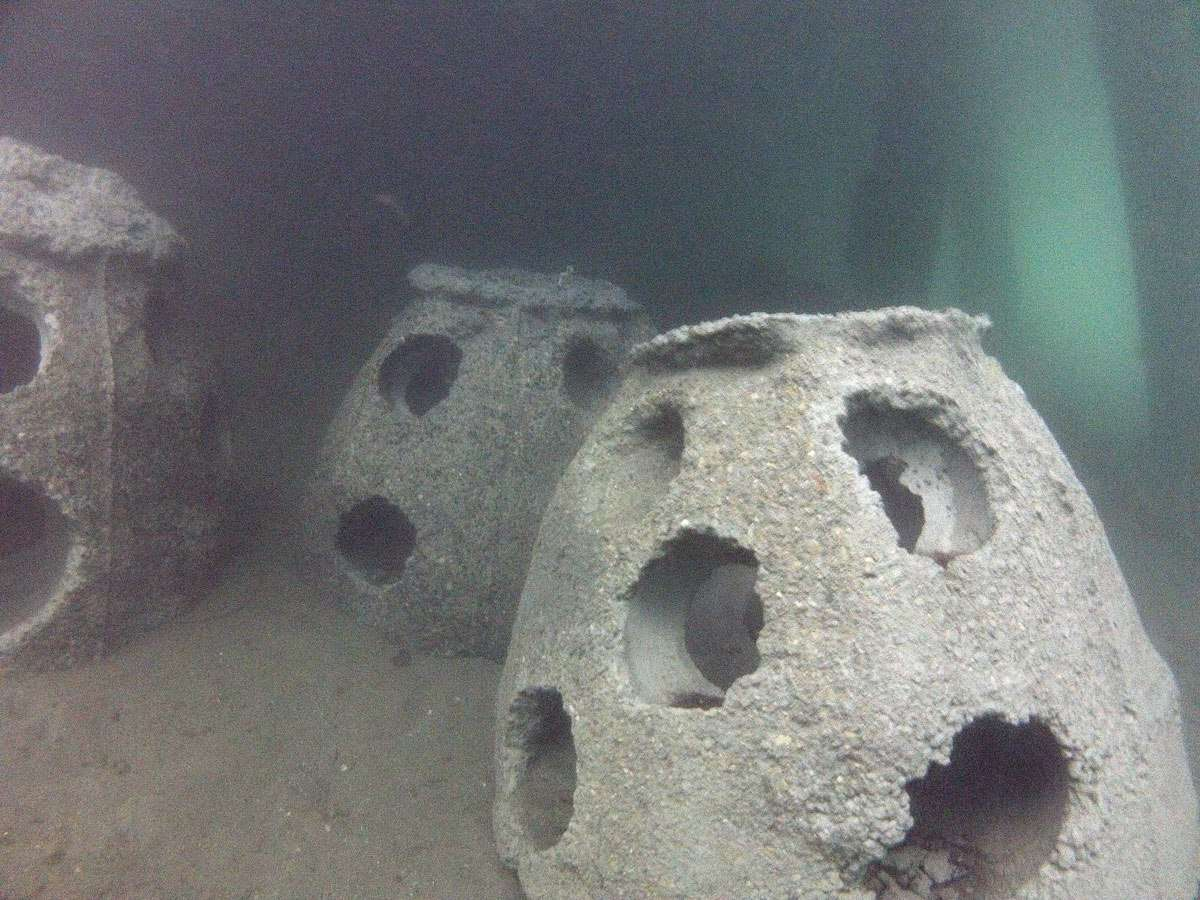 A cluster of Reef Balls under the museum