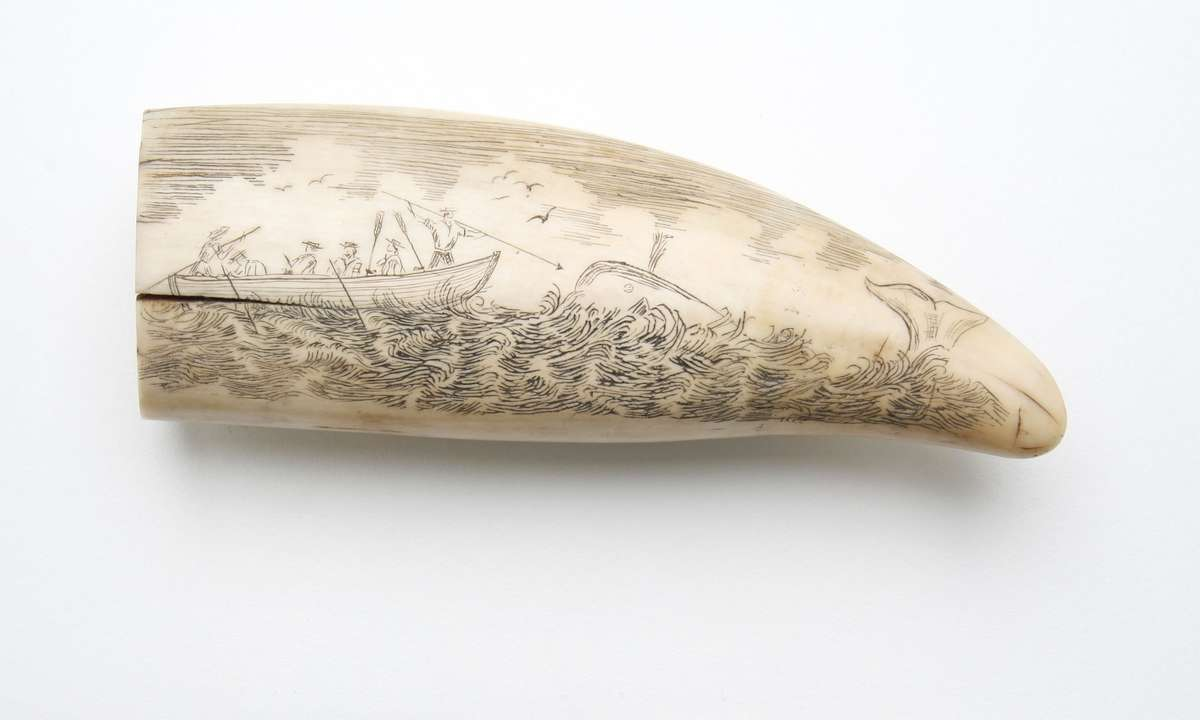 Scrimshaw depicting a whaling scene.
