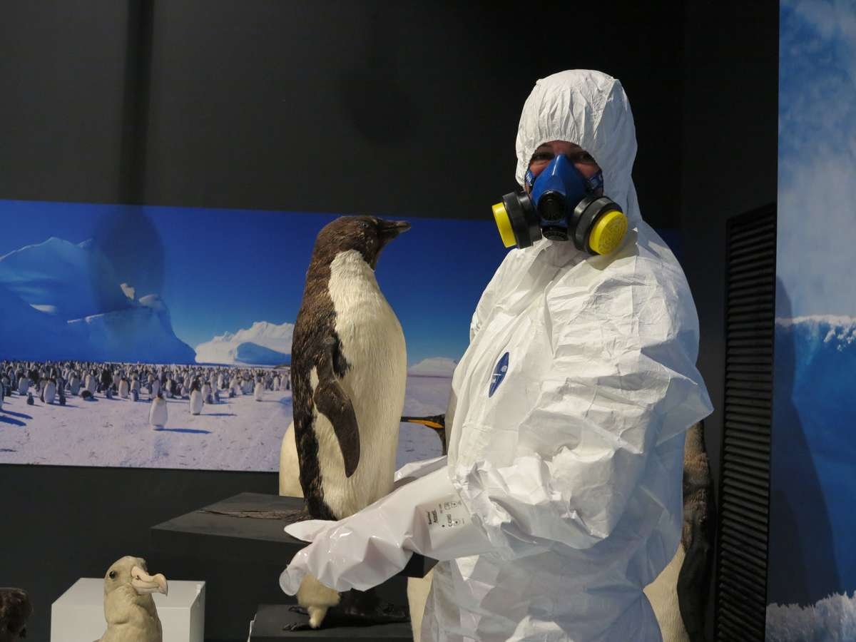 One of our conservators, suited up for work. Image: Kate Pentecost / ANMM.