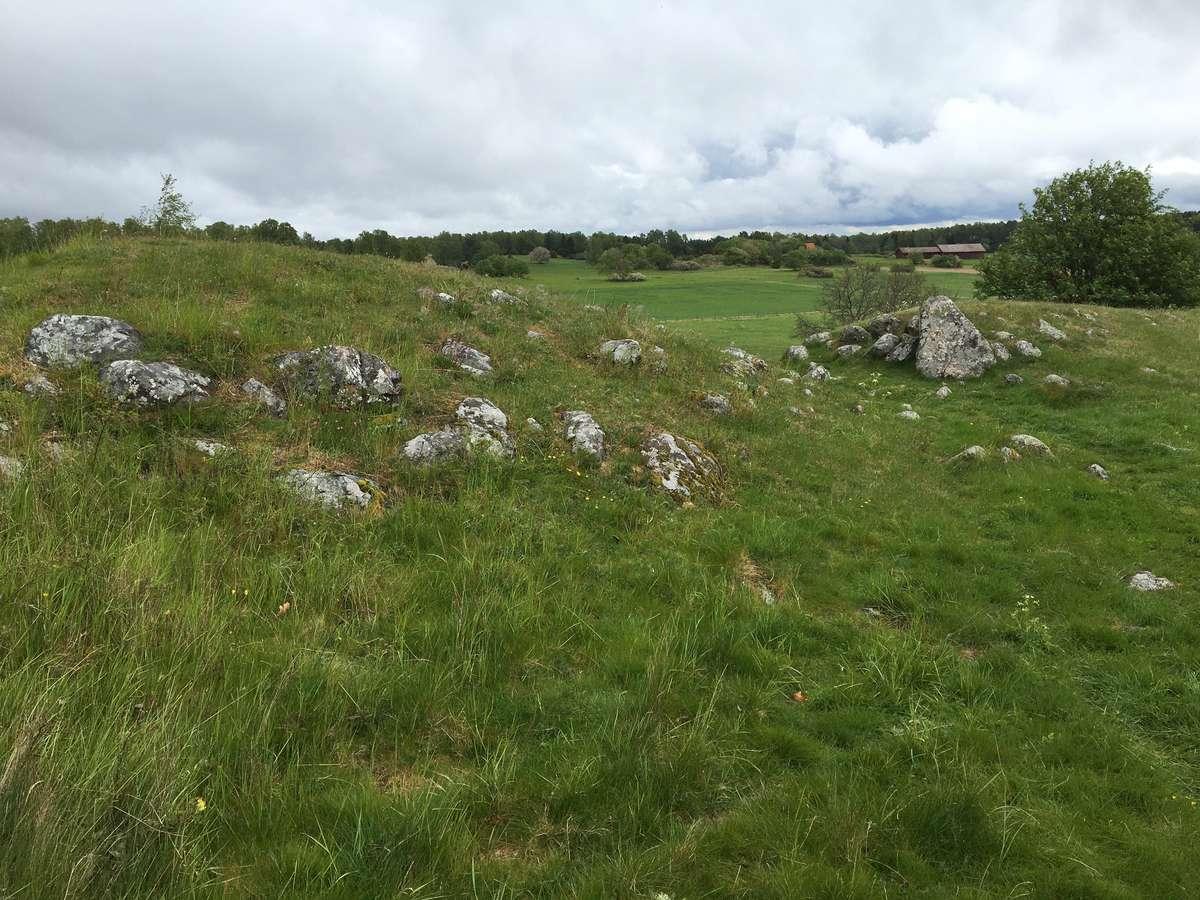 Viking Age burial mounds at Birka, Sweden
