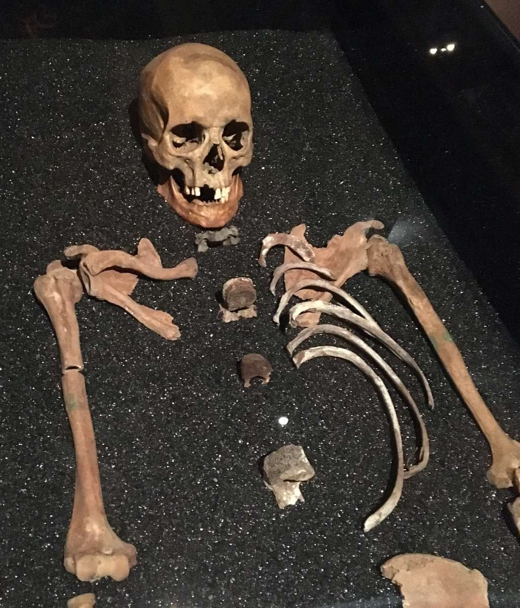 One of the Vasa crew. To archaeologists surprise, two skeletons were found to be women.