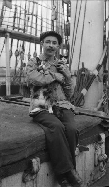 Sailor with pet cats sitting on hatch cover. Image: Samuel Hood / ANMM Collection 00036908.