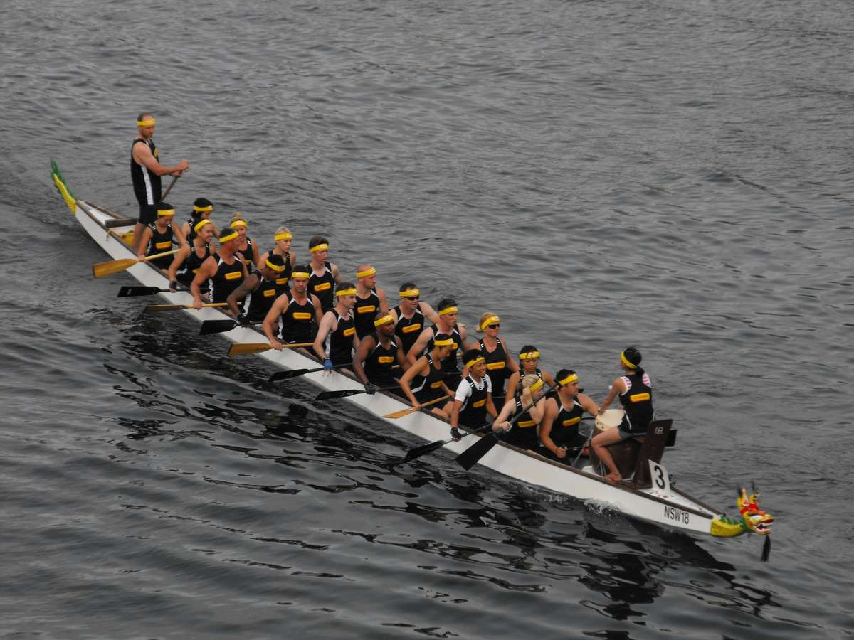 Dragon Boat racing on Darling Harbour, Sydney. Image: Saberwyn (Own work) [CC BY-SA 3.0 (http://creativecommons.org/licenses/by-sa/3.0)], via Wikimedia Commons.
