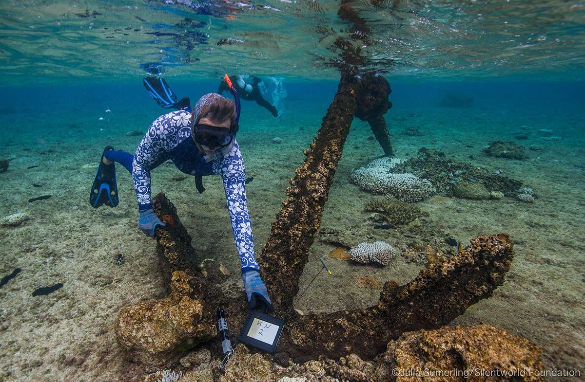 Maritime archaeologist Pete Illidge examines one of three large Admiralty-pattern anchors at site KR2. Image: Julia Sumerling/Silentworld Foundation.