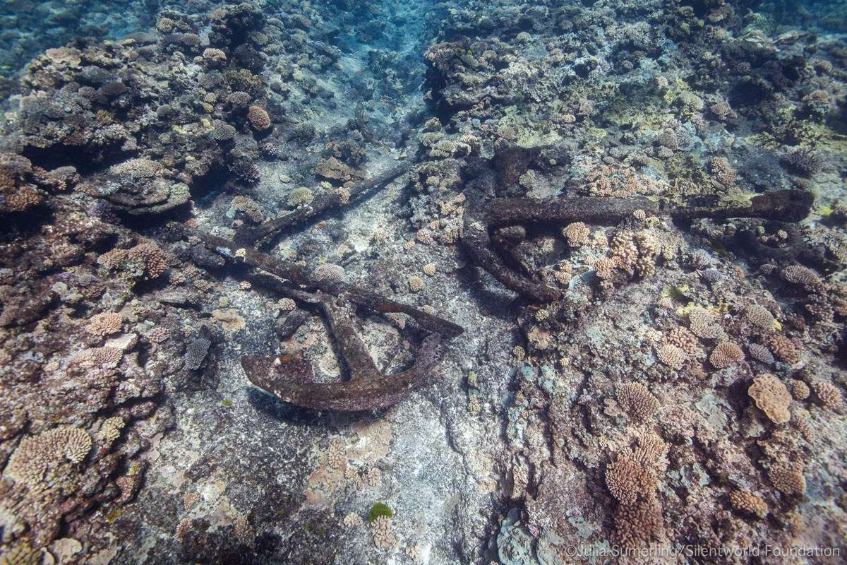 This cluster of Admiralty anchors drew the team's attention to the in-water component of site KR11. Image: Julia Sumerling/Silentworld Foundation.