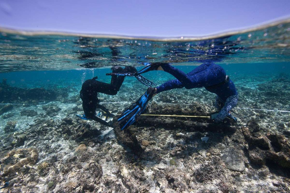 Pete Illidge and Renee Malliaros prove that site mapping and synchronised swimming are not mutually exclusive tasks. Image: Julia Sumerling/Silentworld Foundation.