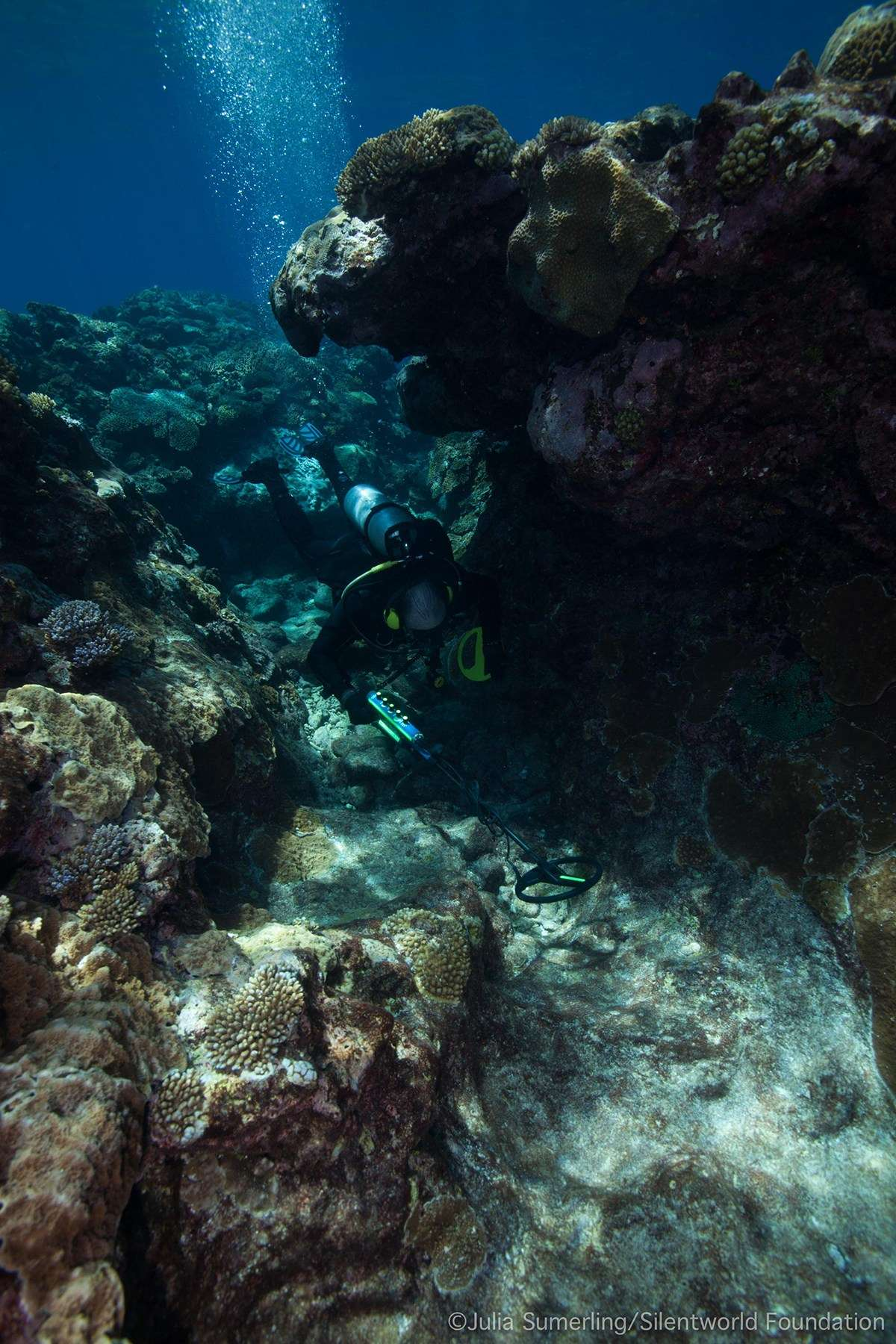 John Mullen conducts a metal detector survey within a reef gully at site KR12. Image: Julia Sumerling/Silentworld Foundation.