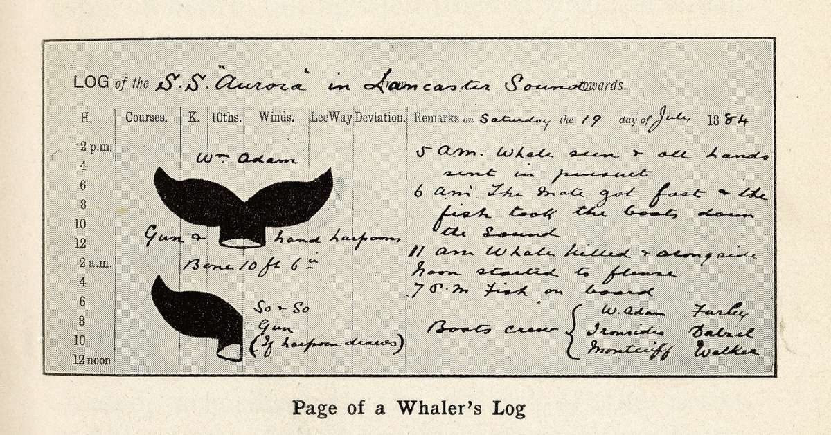 Part of Aurora's 1884 whaling log and portrait of Captain James Fairweather, reproduced from surgeon David Moore Lindsay's account of the 1884 voyage, A voyage to the Arctic in the whaler Aurora, 1911, ANMM Vaughan Evans Library Collection