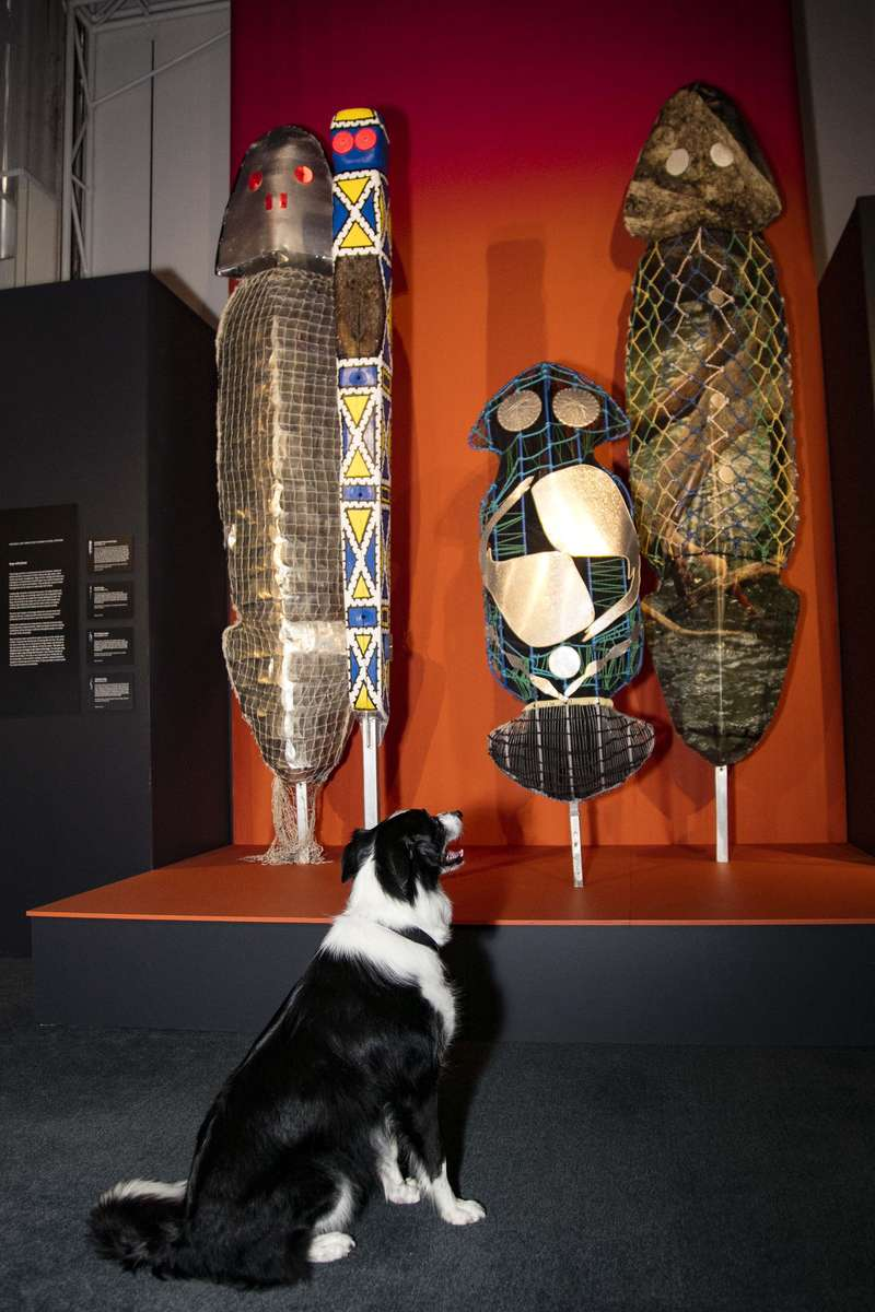 Bailey inspects Bagu at Wildlife Photographer of the Year