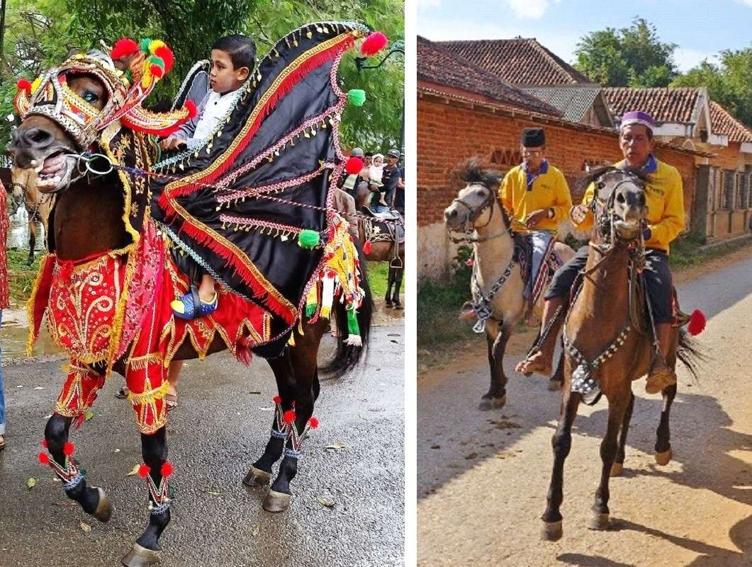 On the island Kangean Besar, harvest festivals, weddings and other major life-cycle events are marked by ceremonies of horsemanship, the tamratan caran kencak.