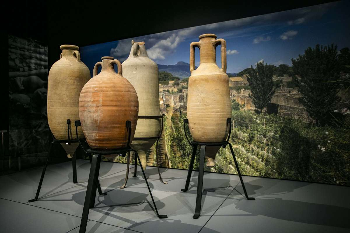 Wine amphorae displayed in <em>Escape from Pompeii</em> with Pompeiian vineyards in the background. Image: Andrew Frolows/ANMM.