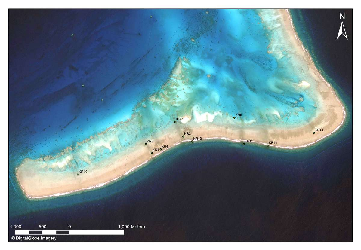 Satellite image of the southernmost reef in the Kenn Reefs complex, showing the locations of historic shipwreck sites relative to dark linear areas of discolouration generated by 'black reefs'. Image: Harris Geospatial/Silentworld Foundation.