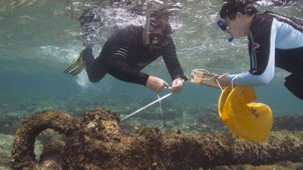 Archaeology on the Great Barrier Reef. Image: ANMM.