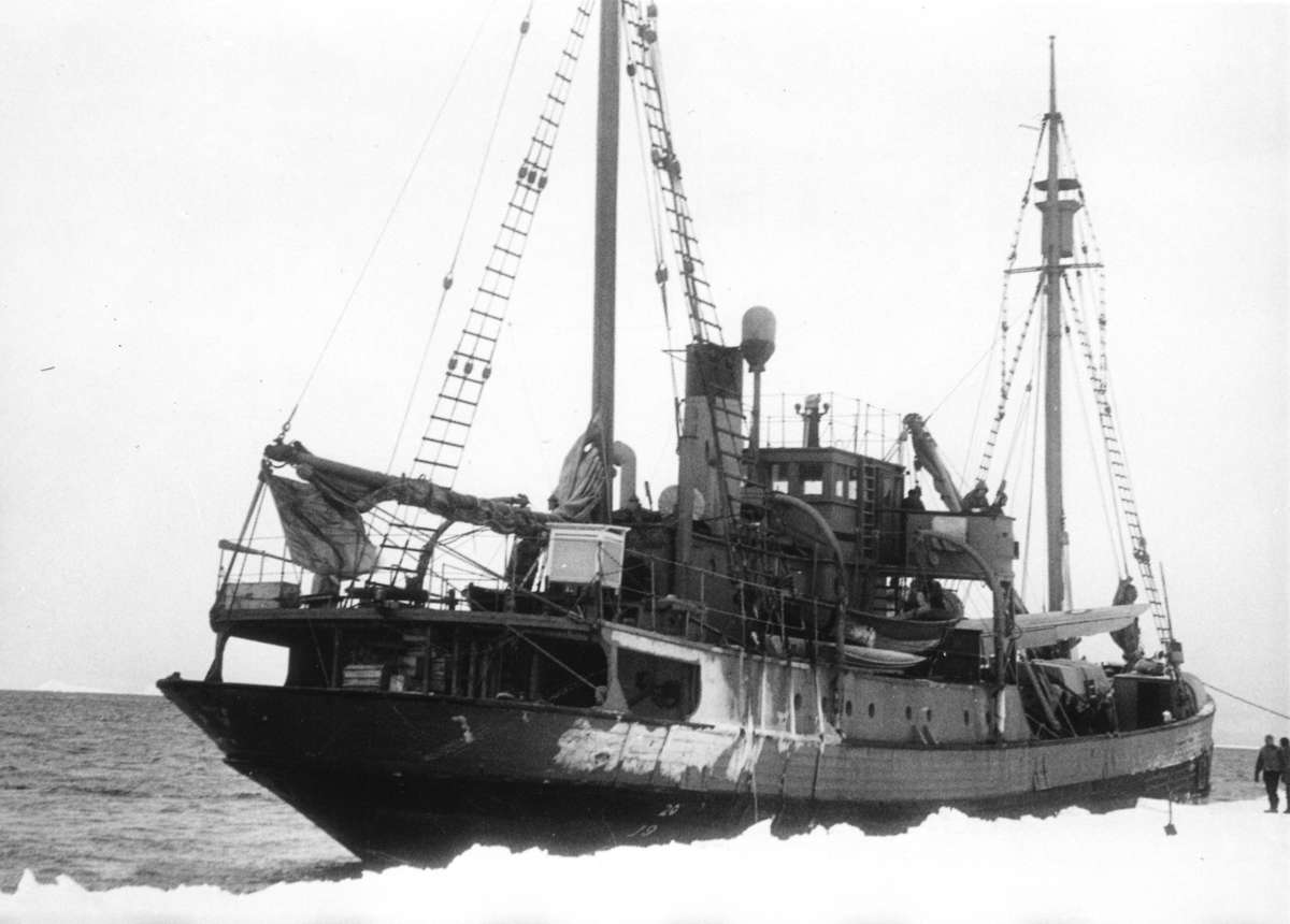 Wyatt Earp moored on the edge of Antarctic pack ice, February 1948. The little wooden ship - with a very unlikely name - pioneered Australia's expeditions into the Antarctic as part of the Australian National Antarctic Research Expedition (ANARE). ANMM Collection ANMS1445[076].