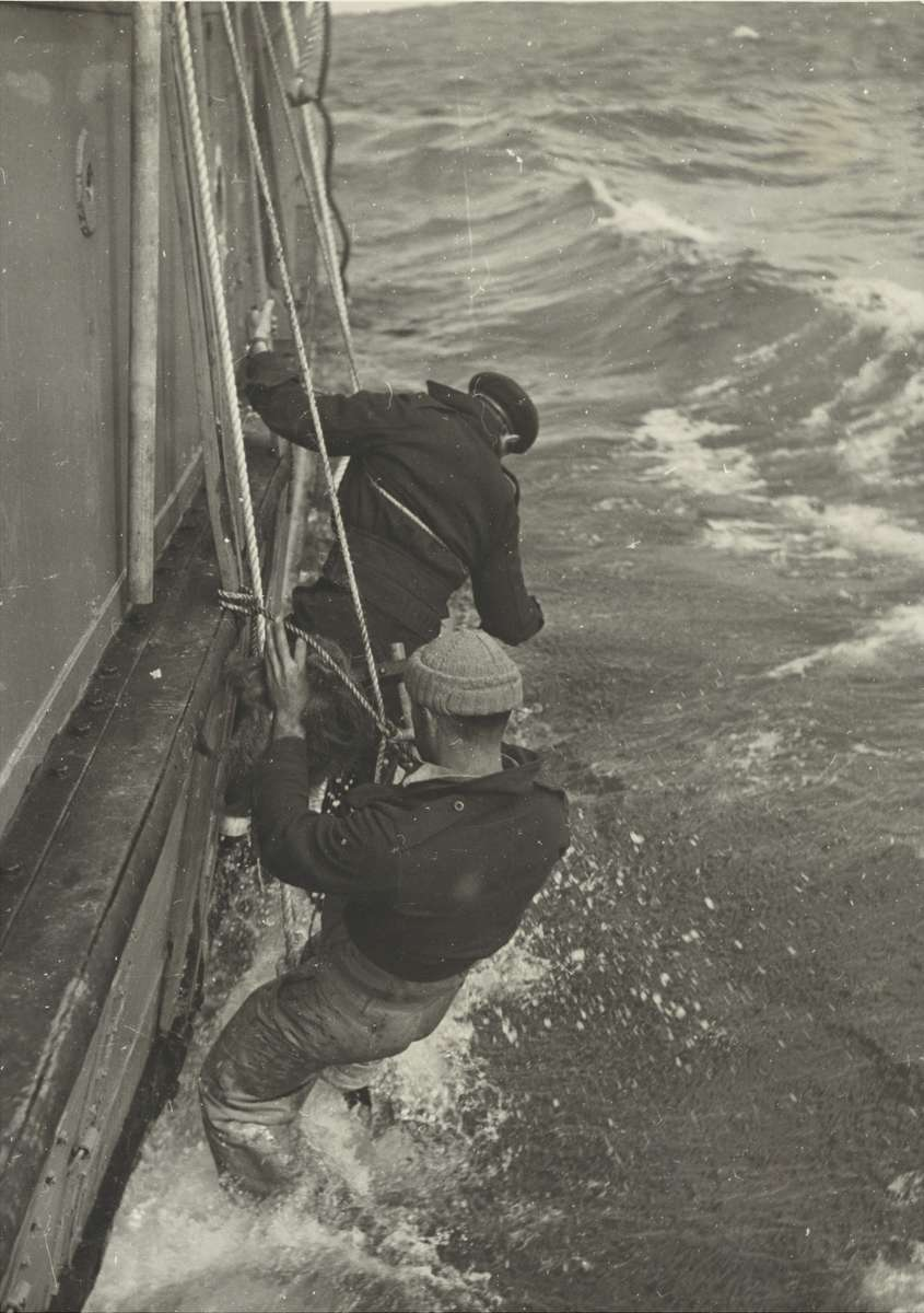 Expedition photograph by Laurence Le Guay showing William Cook (background) and another Wyatt Earp crewman fothering the vessel's damaged hull, 30 December 1947. ANMM Collection ANMS1445[077].