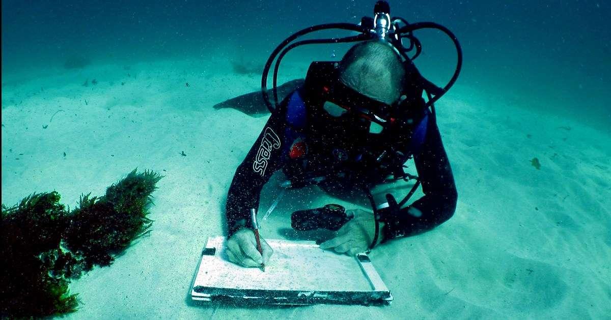 Maritime Archaeology Association of Western Australia (MAAWA) Shannon Reid recording underwater MMAPSS 2016-17. Image: MAAWA.