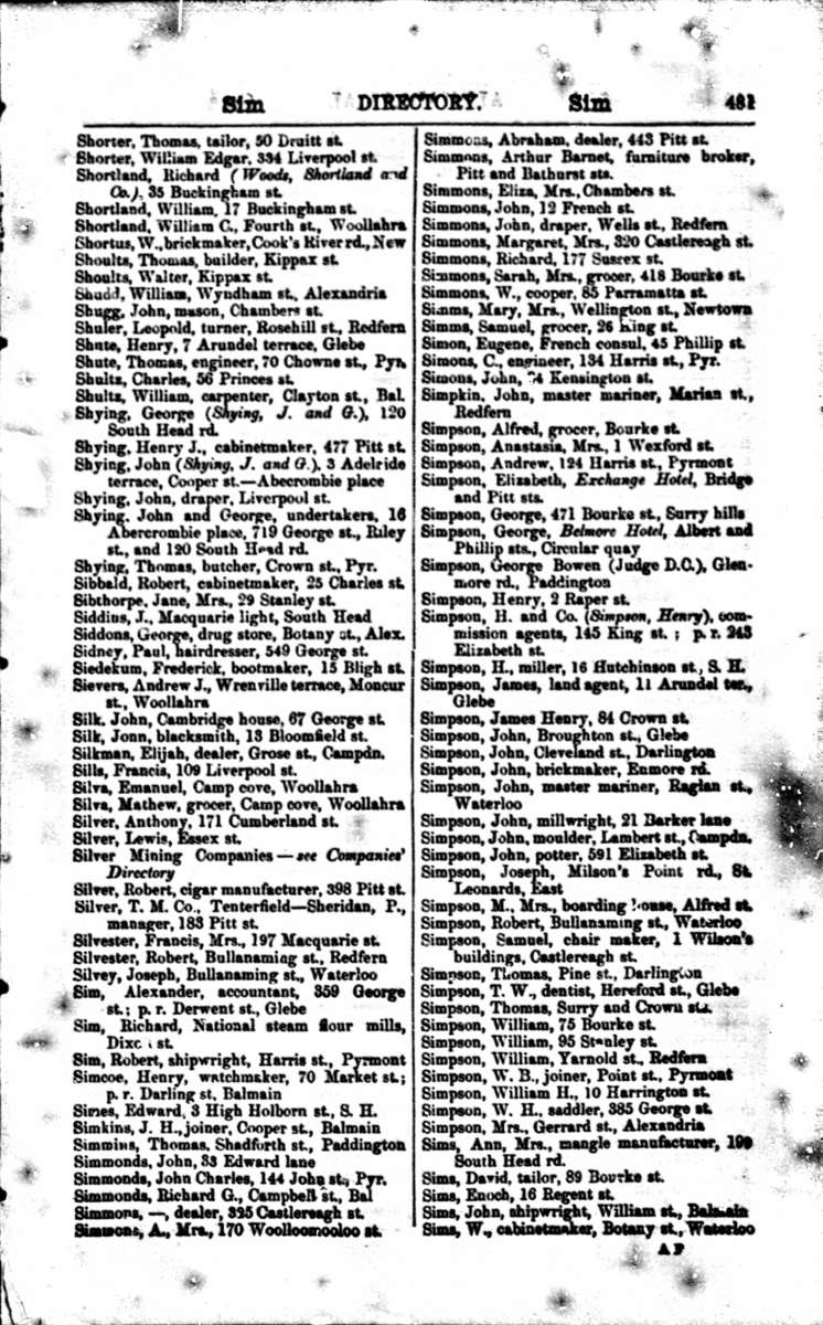 The Shyings in the <em>Sands Directory</em>, 1873, pp 480–481. Courtesy Ancestry.com.