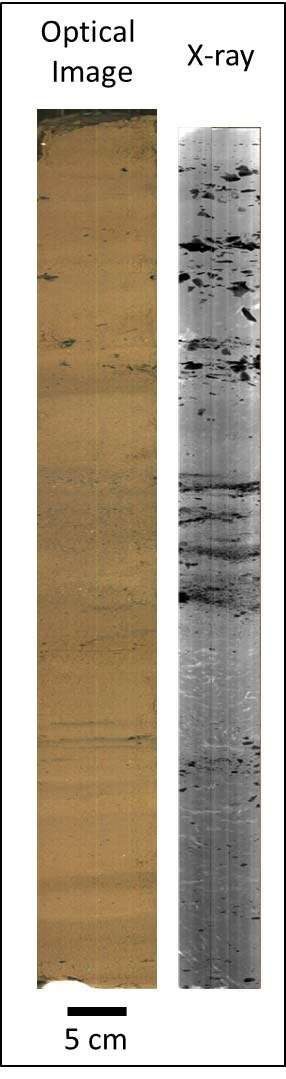 "An example of what the Itrax core scanner can do: This is a core from a New Zealand lake and contains material which spans 2000 years. On the left is the high-resolution optical image while the x-ray image is on the right. Dark objects in the x-ray are dense objects. In this core they are stones. This tells us the concentration of all elements heavier than magnesium in the core, in great detail. It can take measurements every 200 microns. Find out more at <a href=""http://www.ansto.gov.au/AboutANSTO/MediaCentre/News/ACS090153"">ANSTO Itrax</a> and <a href=""https://www.sciencedirect.com/science/article/pii/S1040618217311679"">here</a>. Image courtesy Craig Woodward/ANSTO."