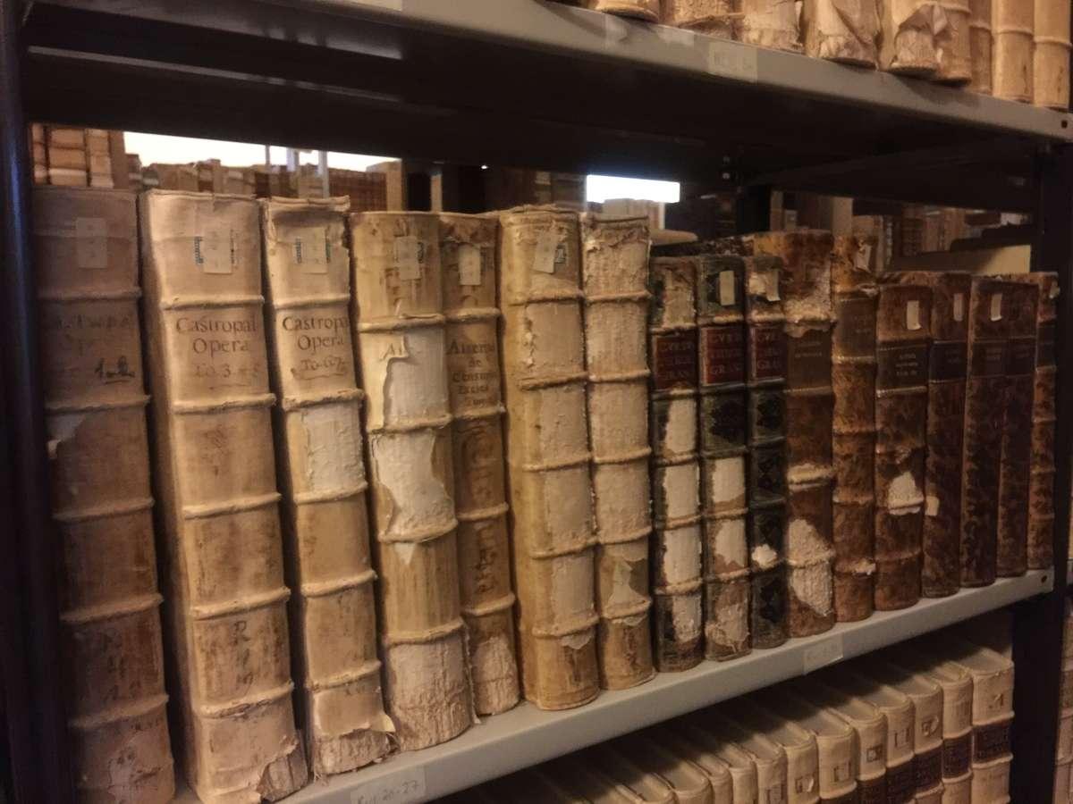 Some of the 5,000 bound volumes held in the Seminario Barbarigo Collection. Image: Lucilla Ronai.