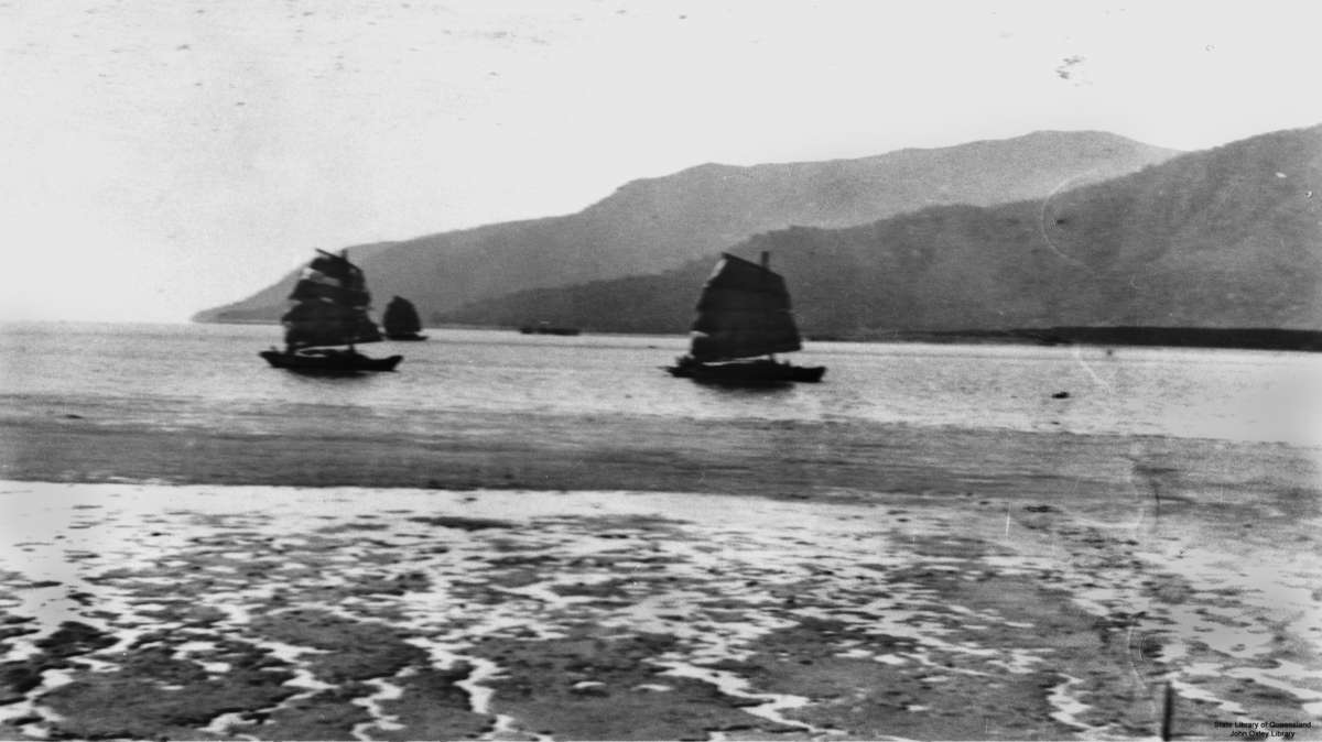 A fleet of Chinese junks at Cairns in northern Queensland, circa 1895. Sights such as this may well have fuelled fears of Chinese invasion in the 1890s. John Oxley Library, State Library of Queensland.