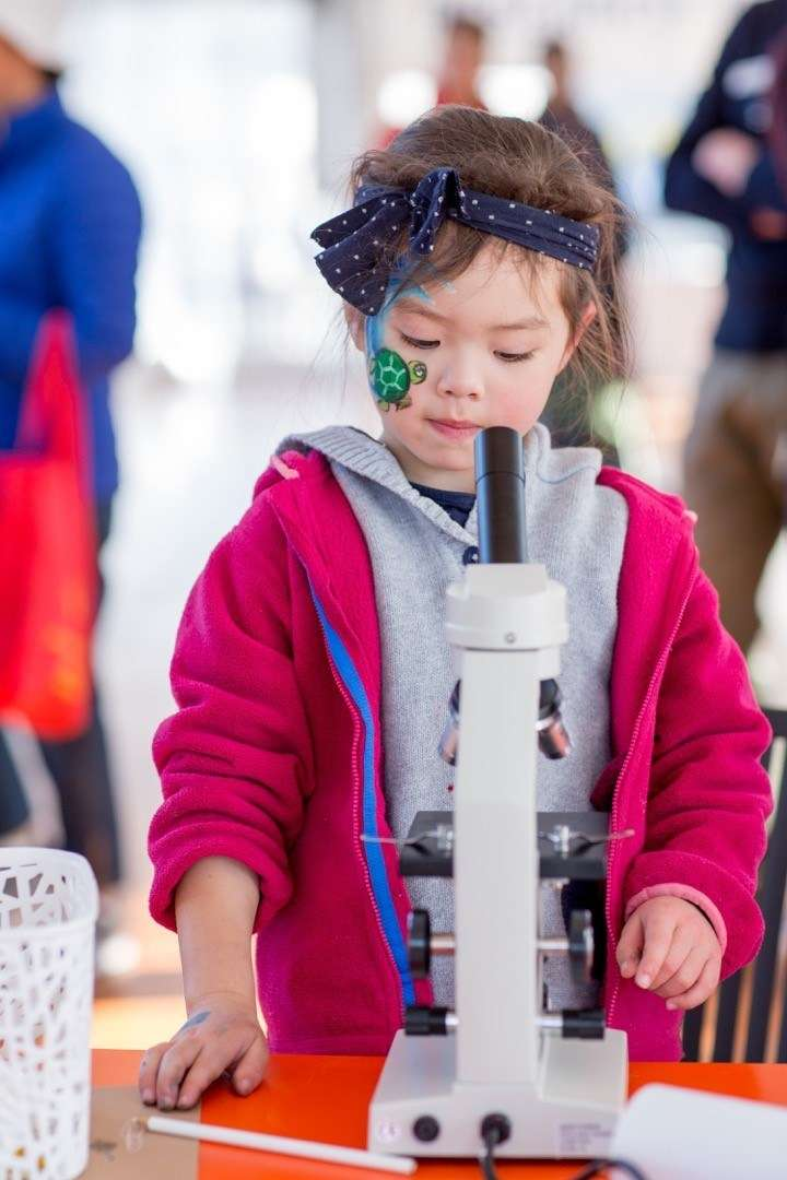 Family fun at Secrets of Sydney Harbour for National Science Week 2018. Image: MacDougall Photography.