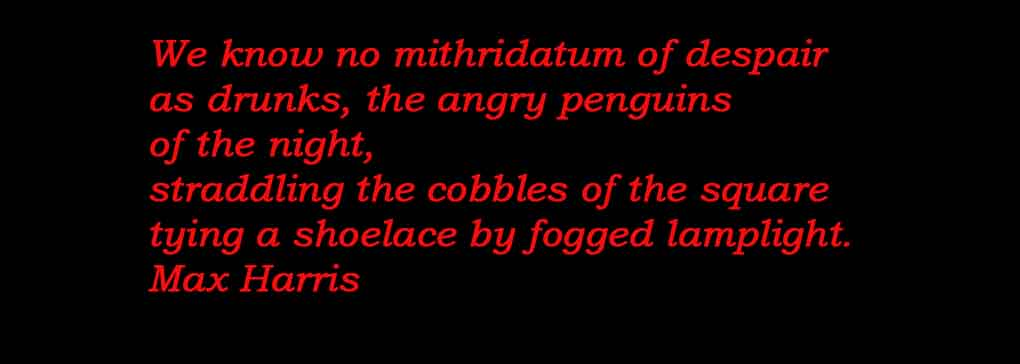 Stormy Petrels or Angry Penguins