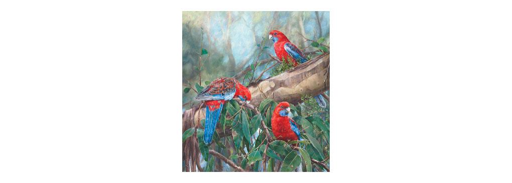 Bird Artists