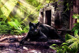black-panther-custodian-of-ancient-temple-ruins-regina-femrite